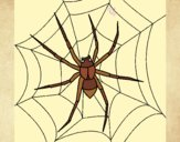 Coloring page Spider painted byLeigh