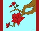Coloring page Almond flower painted byCherokeeGl