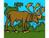 Coloring page Elk painted byCherokeeGl