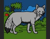 Coloring page Fox painted byCherokeeGl