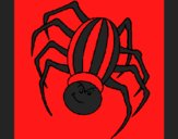 Coloring page Spider painted byCherokeeGl
