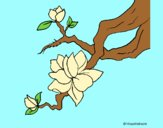 Coloring page Almond flower painted byAnia