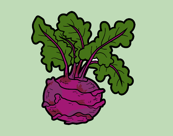Coloring page Kohlrabi painted bybarbie_kil
