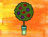 Coloring page Shrub painted byBoylover2