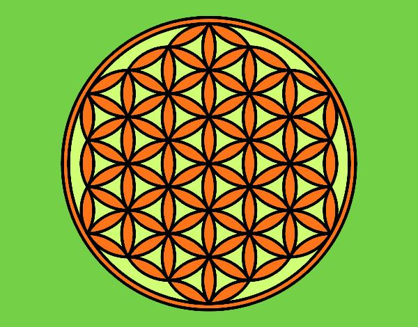 Mandala lifebloom