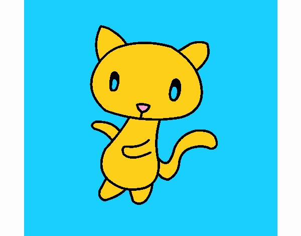 Doodle the cat
