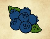 Coloring page Blueberries painted bysamg