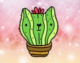 Cat cactus