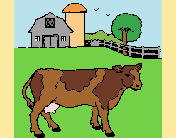 Cow out to pasture