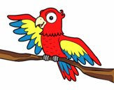 Coloring page Parrot in freedom painted byRoseLuna