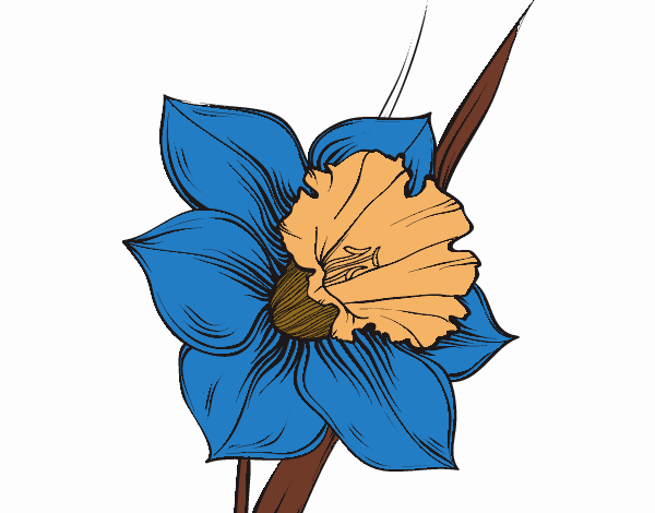 Coloring page Narcissus flower painted byKhaos006