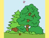 Coloring page Forest painted byAnia