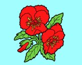 Coloring page Heartsease flowers painted byAnia