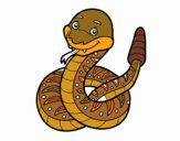 A rattlesnake