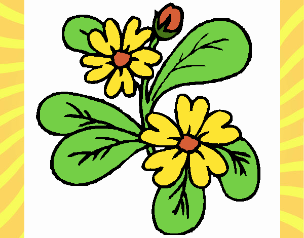 Coloring page Flowers 4a painted byNerak