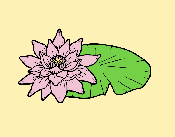 Coloring page A lotus flower painted bylorna