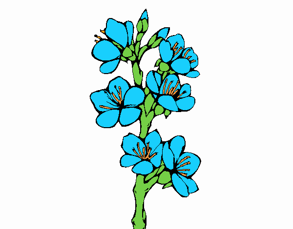 Coloring page Country flowers painted byNerak