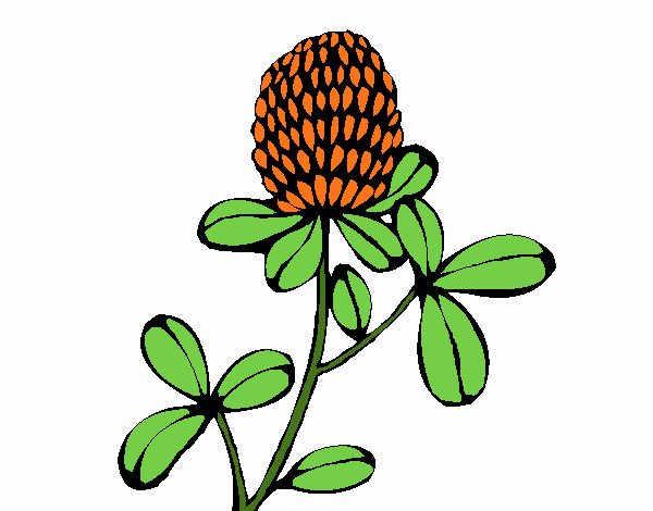 Coloring page Forest flower painted byNerak