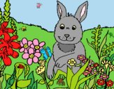 Coloring page Rabbit in the country painted bylorna