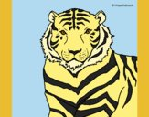 Coloring page Tiger painted bylorna