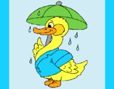 Coloring page Duck in the rain painted bylorna