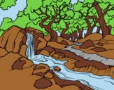 Coloring page Forest landscape with a river painted bylorna