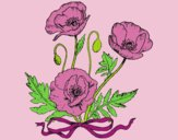 Coloring page Some poppies painted bylorna