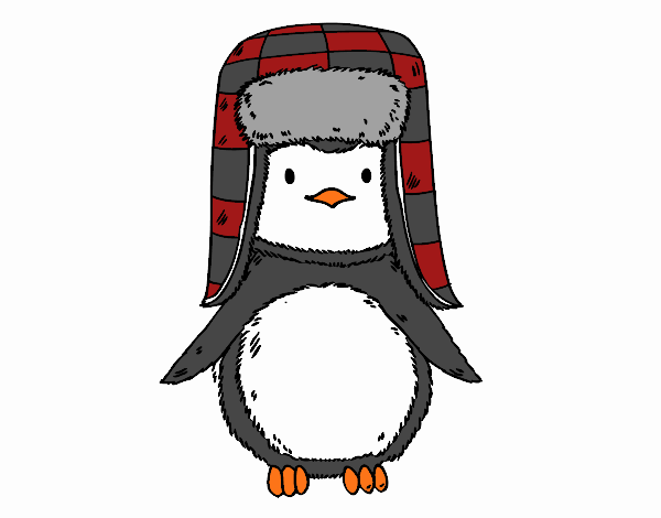 A penguin with cap