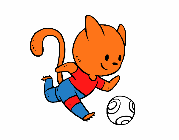 Football cat player