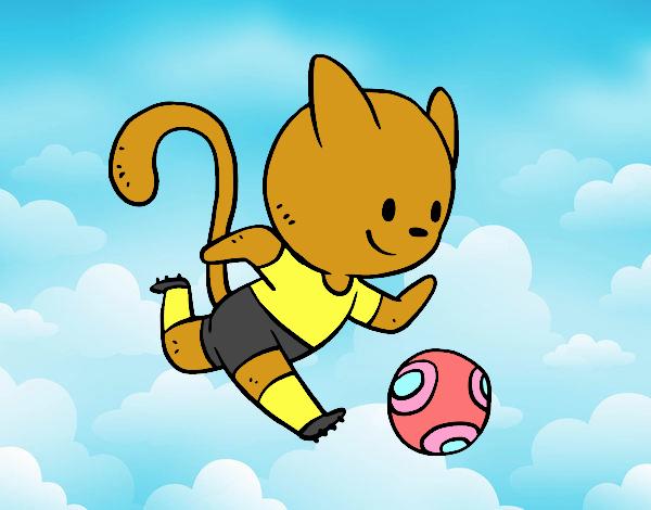 Football cat player