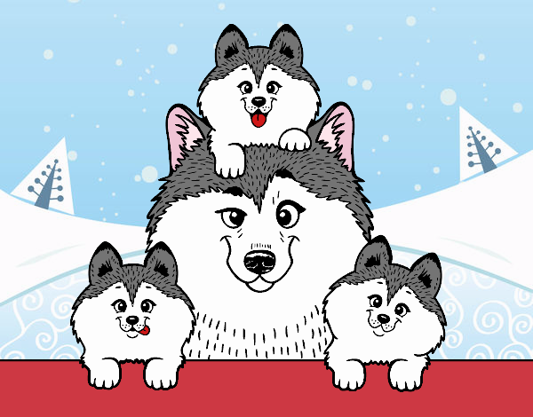 Coloring page Husky family painted bySamantha
