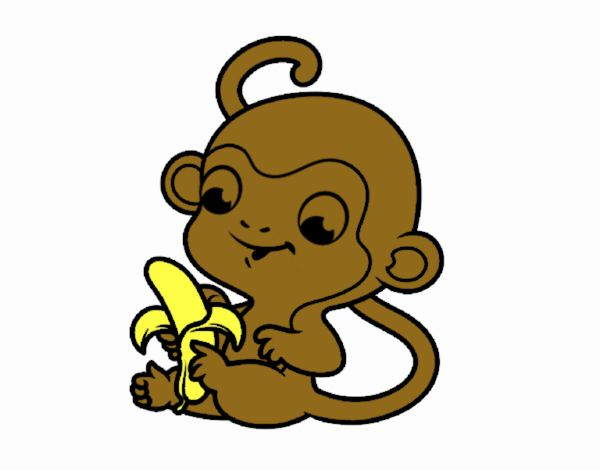 Monkey with banana
