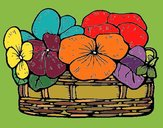 Coloring page Basket of flowers 12 painted byNita