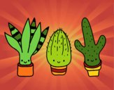 Coloring page Mini cactus painted byPiaaa