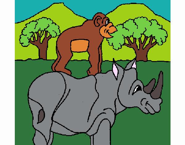 Rhinoceros and monkey