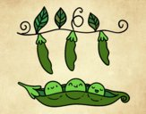 Coloring page Some peas painted byPrincess13