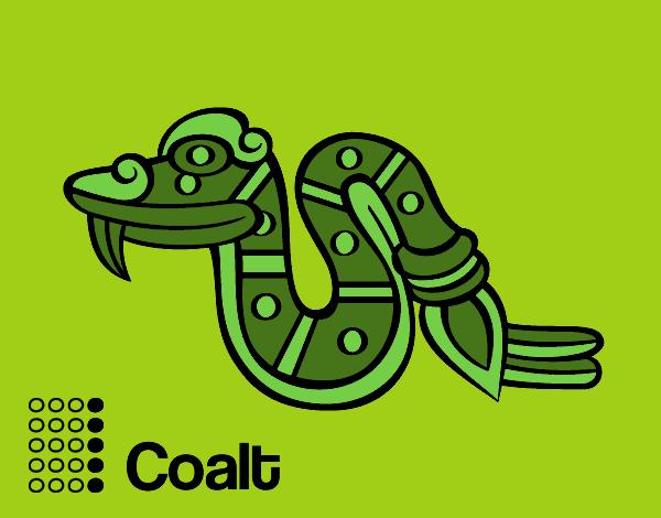 The Aztecs days: the Snake Coatl