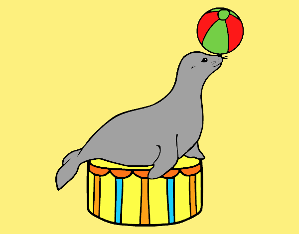 Coloring page Equilibrist seal painted bylorna