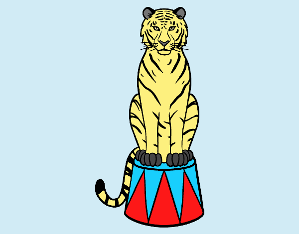 Coloring page Tiger of circus painted bylorna