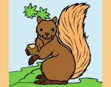 Coloring page Squirrel painted bylorna