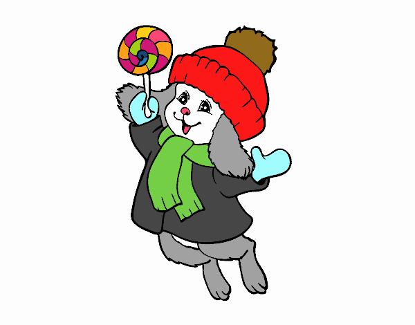 Warm bunny
