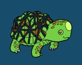 Coloring page Indian star tortoise painted byDaisy66