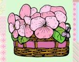 Basket of flowers 12