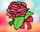 Rose, flower
