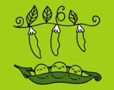 Coloring page Some peas painted byeliza32