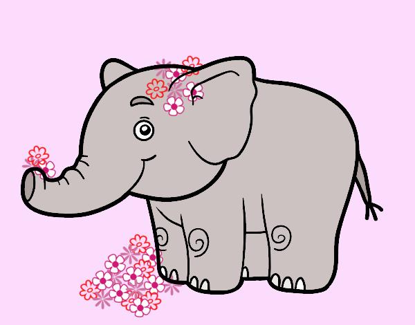 A little elephant