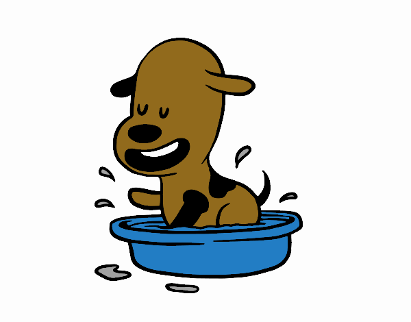 A puppy in the bathtub
