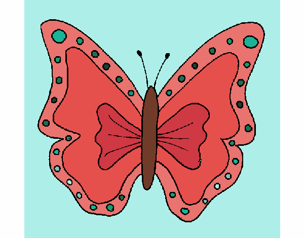 Butterfly 4a