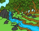 Coloring page Forest landscape with a river painted bynayrb
