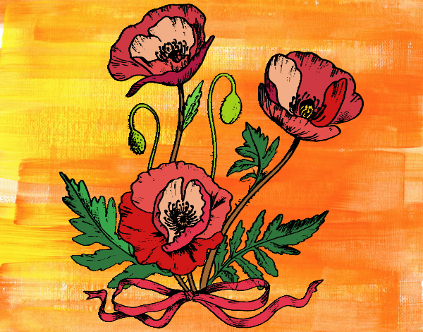 Coloring page Some poppies painted byJena